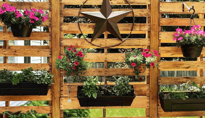 diy pallet wall for vertical garden in backyard