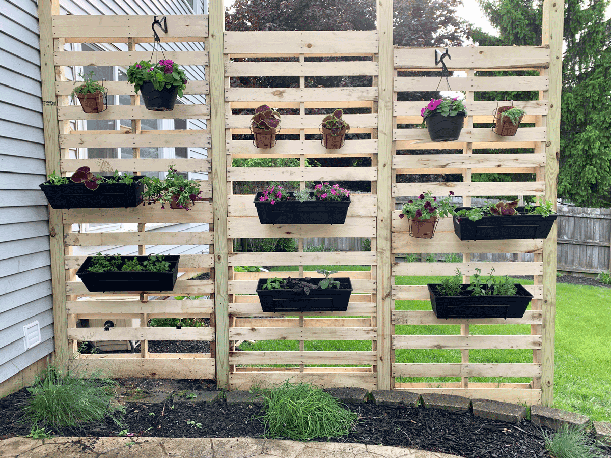 pallet wall designed to block sun and hang planters off