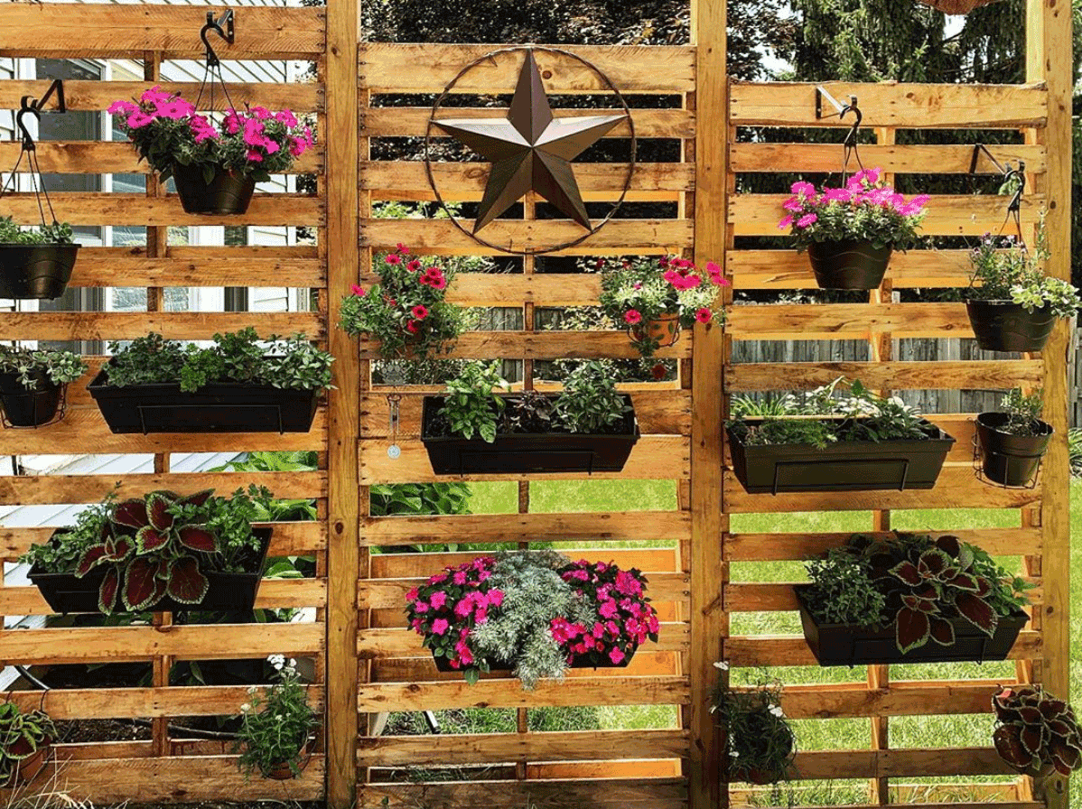 backyard vertical garden with hanging planters on pallets