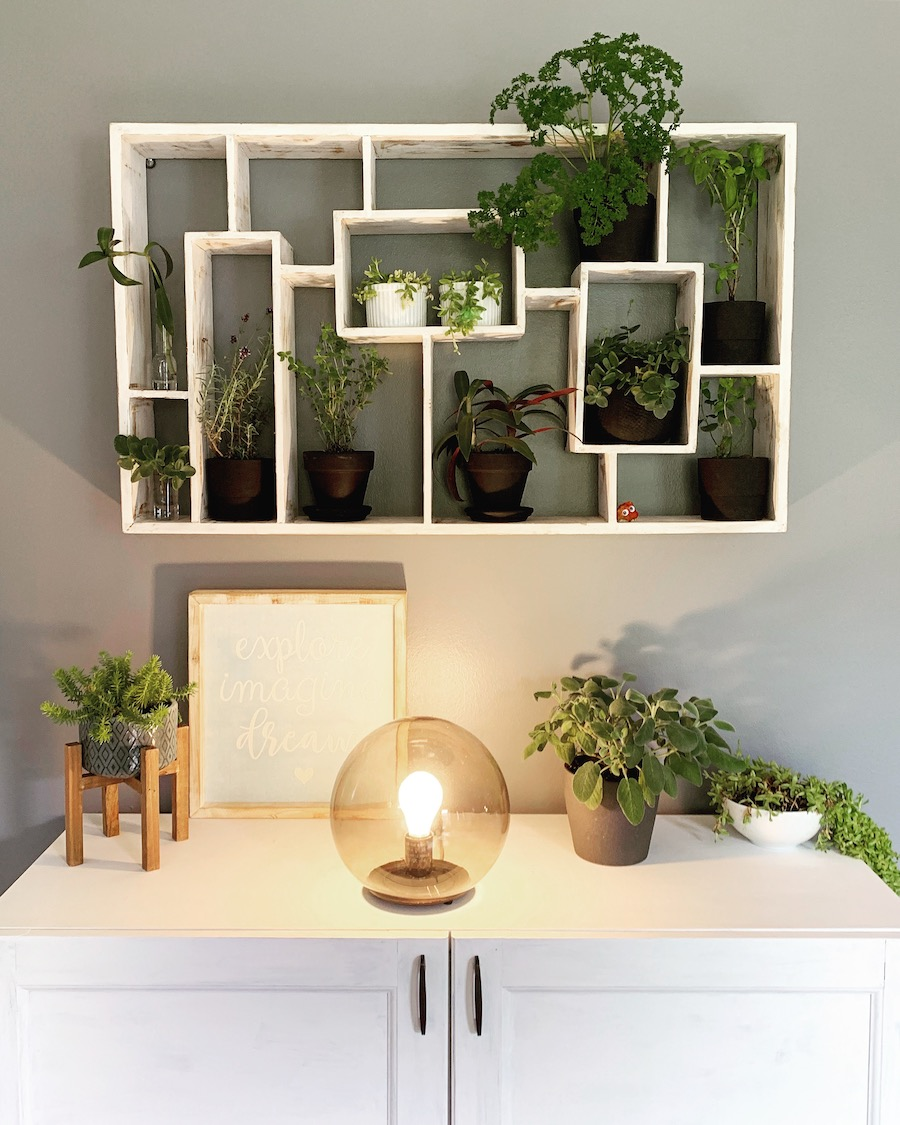 indoor wall garden from playroom to plant room