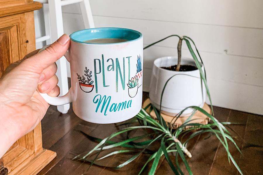 how to prune a dracaena plant
