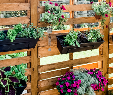 black planters for herbs on cedar pallet plant wall