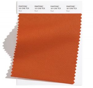 rust swatch for pantone palette 2021