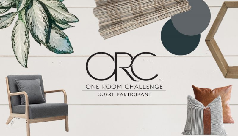BHG-ORC-one-room-challenge-week-one-the-shady-gal-writes