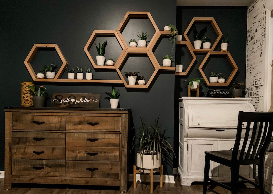 accent wall of blue with honeycomb shelves