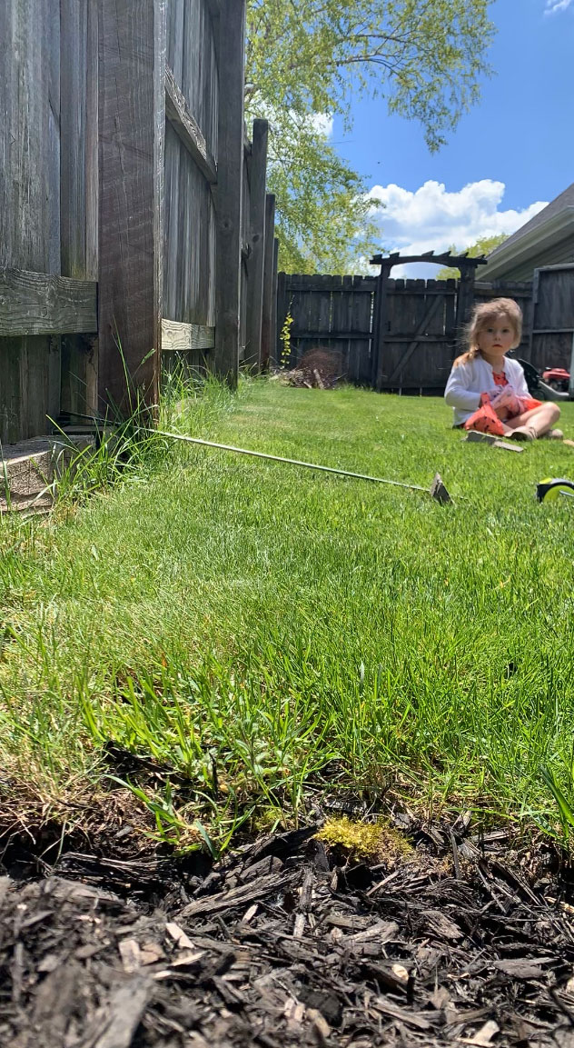 wooden fence with child in grass