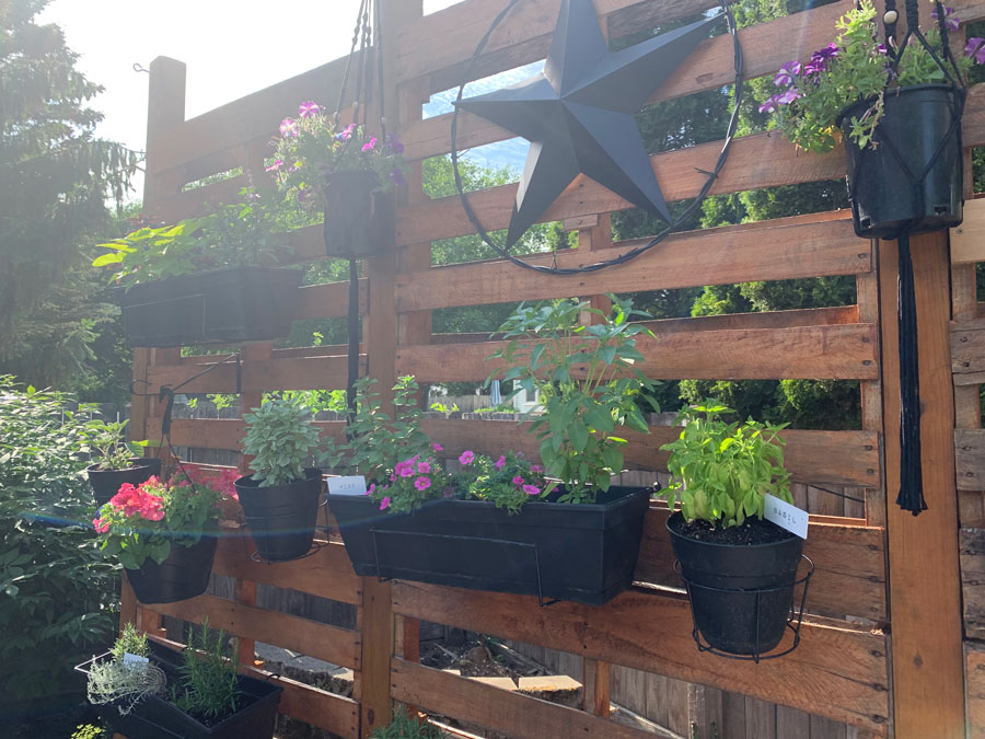 living wall with herbs on pallet wall garden