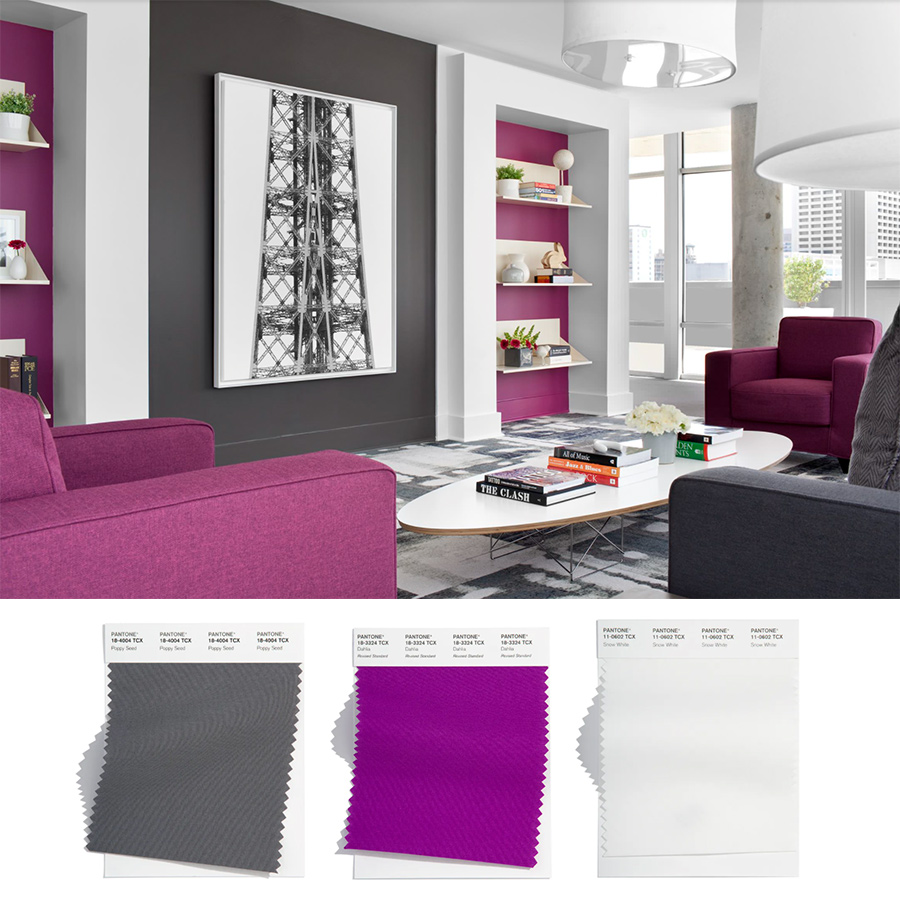 purple and charcoal living room